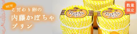 【数量限定】こだわり卵の内藤かぼちゃプリン