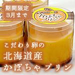 hokkaido-pudding_sum
