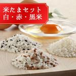 こだわり卵の米たまセット (卵かけごはん)白・赤・黒米